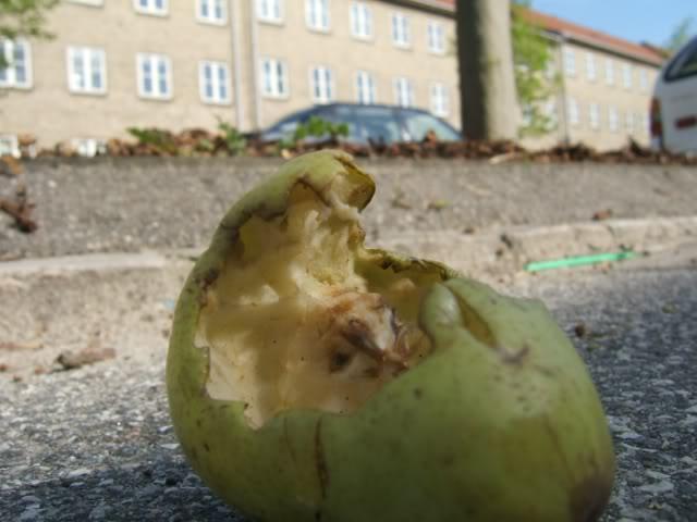 Rotting_Pear