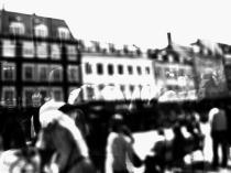 scenes_of_summer7