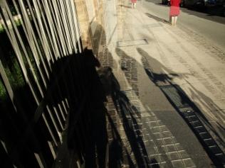 shadows_lead_14