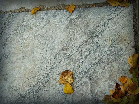 poesía_otoño_2013